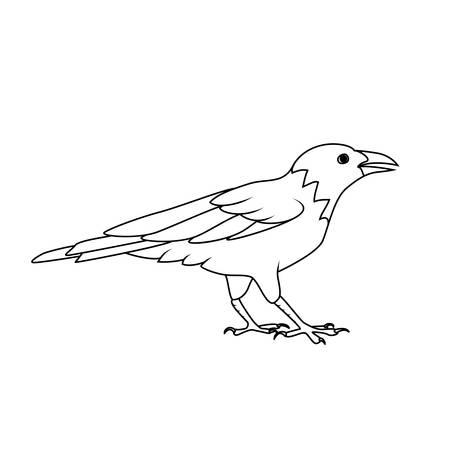 Ilustración Del Cuervo Dibujos Animados Libro Para