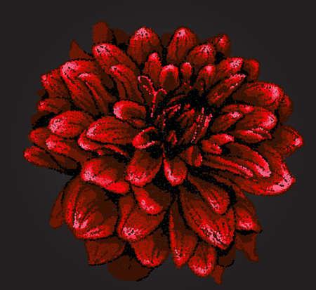 pointillism: Pointillism style dahlia