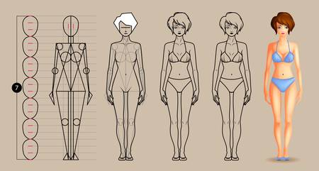 Drawing lesson female body Vectores