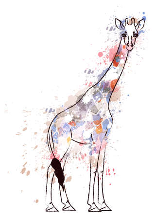 safari animals: Giraffe covered with colorful grunge splashes Illustration