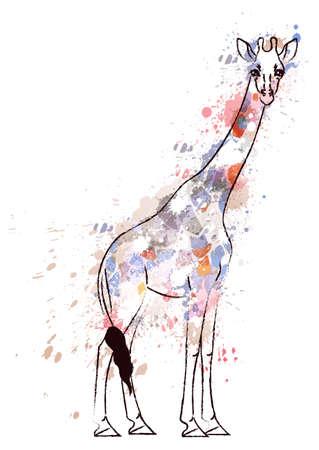 animales safari: Jirafa cubierto de salpicaduras de colores grunge