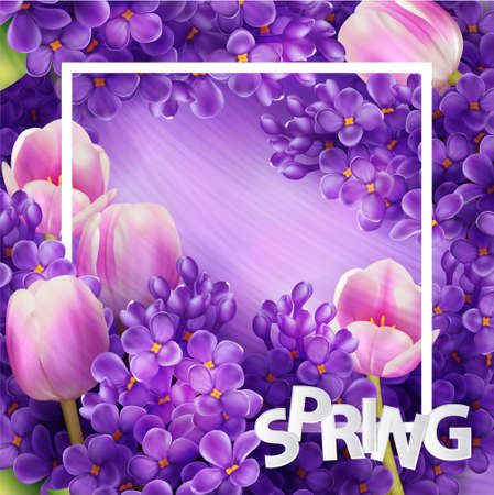 lilac flower: Bright lilac flowers and tulips decorative frame template
