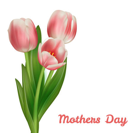 buds: Realistic tulips bouquet Mothers day card design template