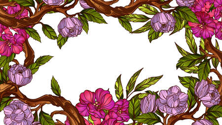 floral vintage: Vintage colorful floral frame Illustration
