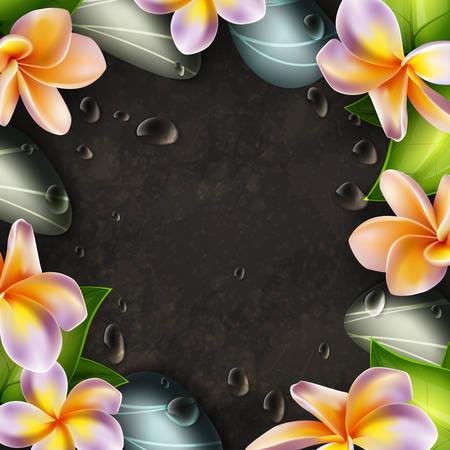 oriental medicine: Frangipani flowers and zen stones spa frame template Illustration