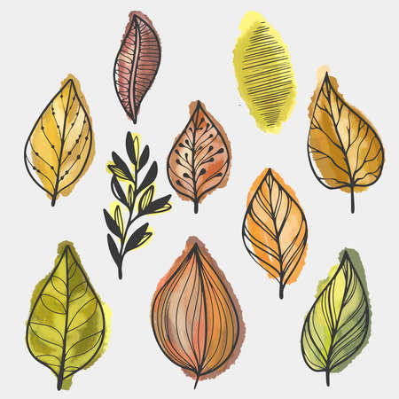 Hand drawn colorful early spring leaves leaves set Иллюстрация