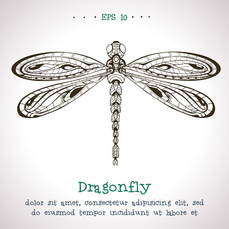 dragonfly: Ornamental hand drawn vintage vector Dragonfly.