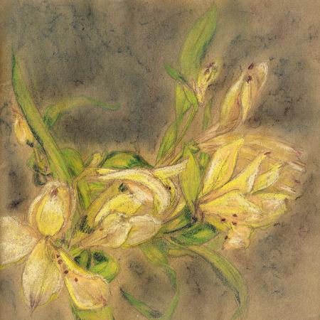 realism: Pastel shining lily drawing