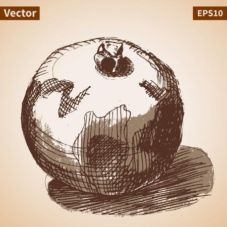garnet: Vector sketch of garnet. Illustration for your design