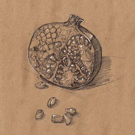 garnet: Sketch of garnet. Illustration for your design
