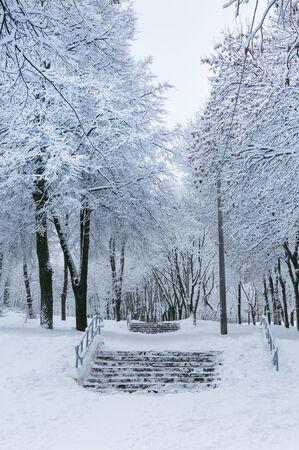 snowbound: Fairytale winter background with snowbound stairway.