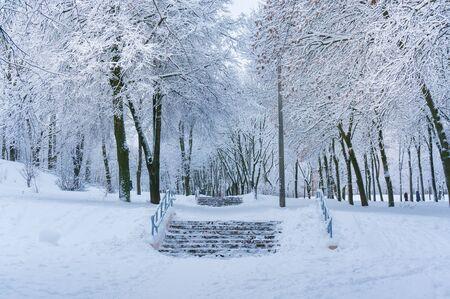 積雪公園とおとぎ話冬の背景 写真素材
