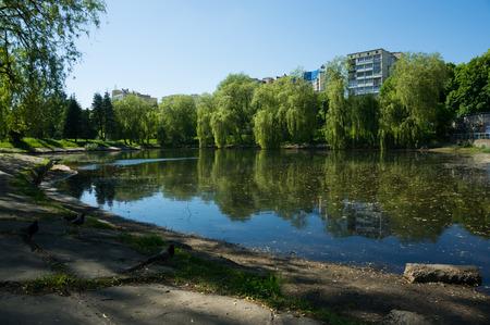 夏の晴れた日にミンスクで都市小さな湖。 写真素材
