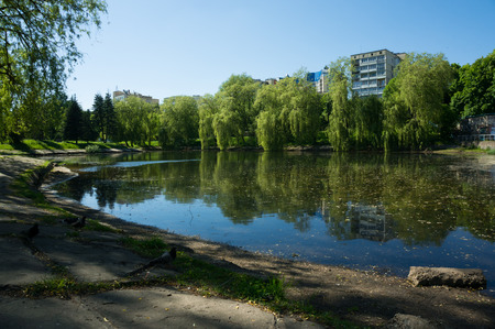 Urban small lake in Minsk at summer sunny day.