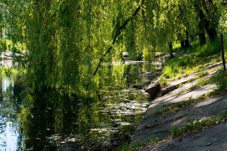 夏の晴れた日に海岸を都市の小さな湖。 写真素材