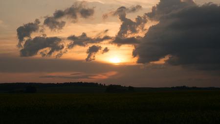 咲く煮込み夕焼けの田園風景の景観。 写真素材