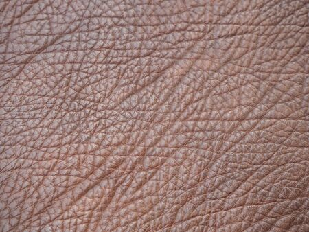 leather skin: brown leather skin Stock Photo