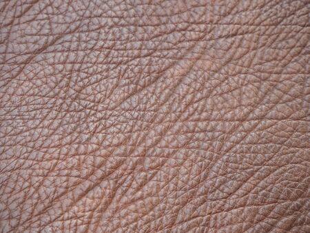 peau cuir: la peau de cuir brun Banque d'images