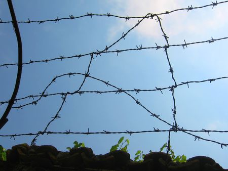 delimit: barbed wire fence Stock Photo