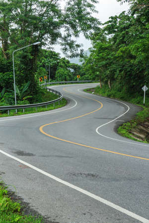Road curve and green forest after falling rain photo