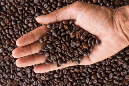 coffe beans: hand hold coffee beans and coffee beans background Stock Photo