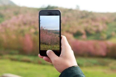 close-up hand hold phone taking landscape photo