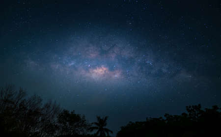 milky way over forest on night