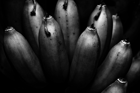tasseled bananas on the tree - some without