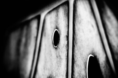 leaf abstract macro in black and white