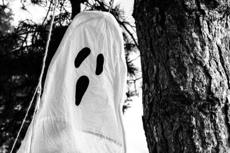 tree hanging ghost in the outdoors at halloween