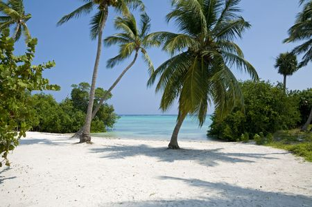 Punta Cana beach in the Dominican Republic. Stock Photo