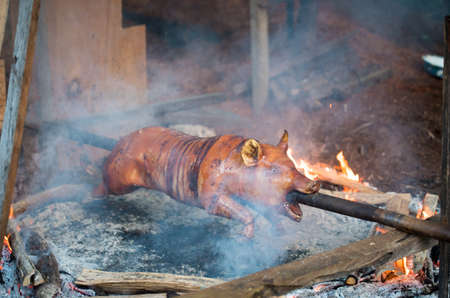 A pig is roasted on an open flame on a spit