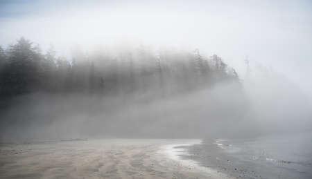 west  coast: A foggy morning on the west coast Stock Photo