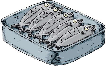 tin: A tin of cartoon sardines. Stock Photo