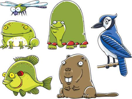 animales del bosque: Conjunto de animales de dibujos animados forestales de Am�rica del Norte. Vectores