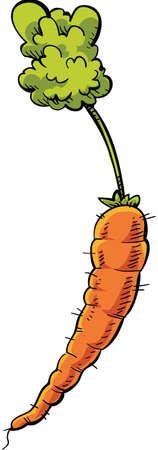 Een frisse, rijpe cartoonwortel.
