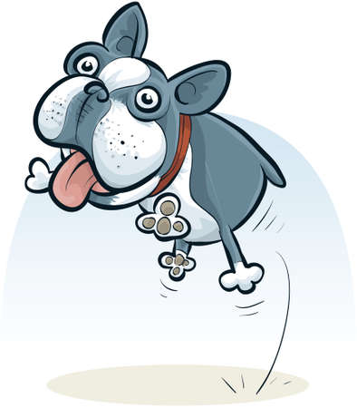 boston terrier: A cartoon Boston Terrier jumping with a friendly face.