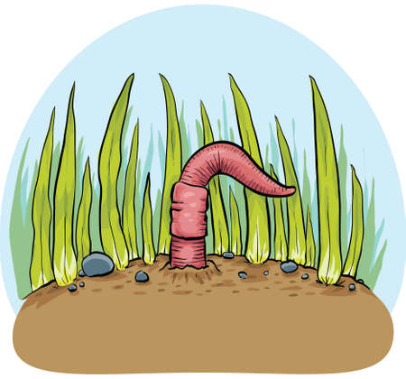 squirm: A cartoon earthworm emerges from the ground.