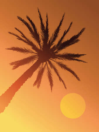 The sun sets behind a hazy silhouette of a palm tree.