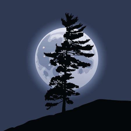 albero pino: La luna piena sorge dietro la sagoma di un albero di pino. Vettoriali