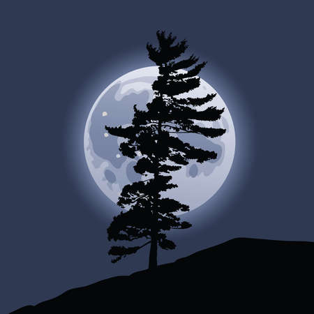 backdrop: The full moon rises behind the silhouette of a pine tree.