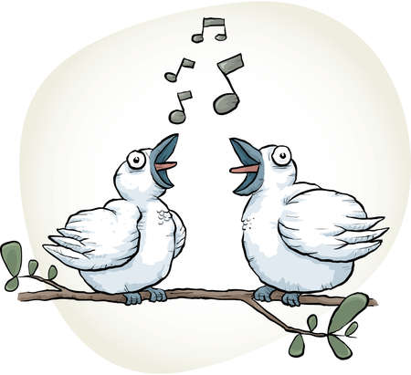 duet: Two cartoon songbirds sing together.