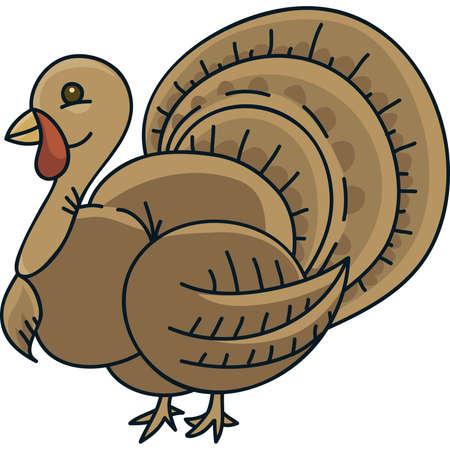 turkey feather: A plump, cartoon turkey bird.