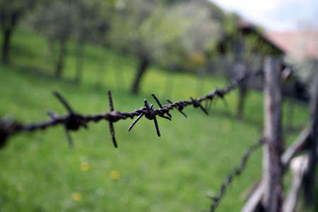 Barbed wire Stock Photo - 4807449