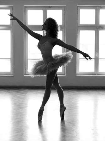 ballerina: Young ballerina with a beautiful tutu, posing  Stock Photo