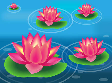 Water lilies and flowers  Vector