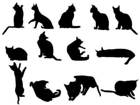 silueta de gato: Pequeños gatitos