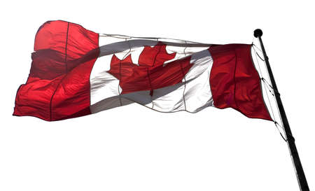 Translucent large Canada flag against white background