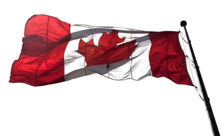 Translucent large Canada flag against white background