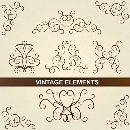 Decorative floral brown elements  Vintage design  Set of classic floral elements  collection   Vector